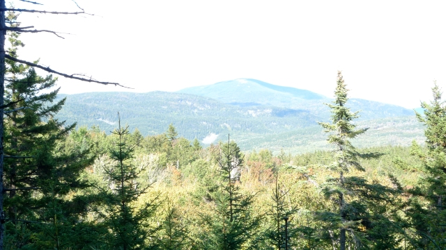 AT View