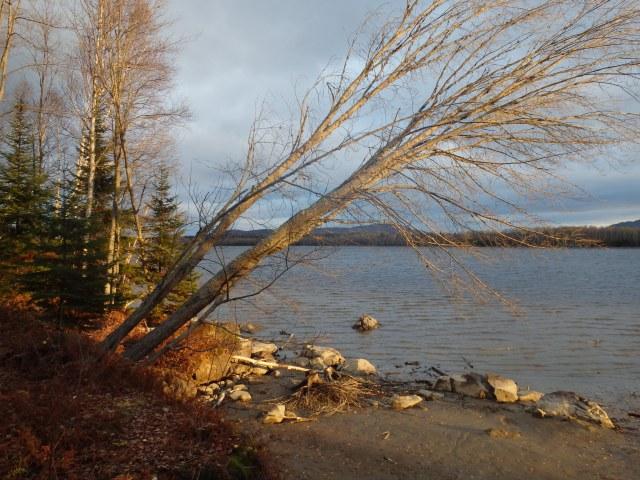 Flagstaff Lake shoreline