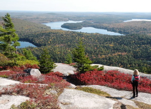 As part of a regimen for the 1,000-mile goal, include hiking time in Acadia National Park. With views like this, you'll be invigorated in both body and mind. Carey Kish Photo