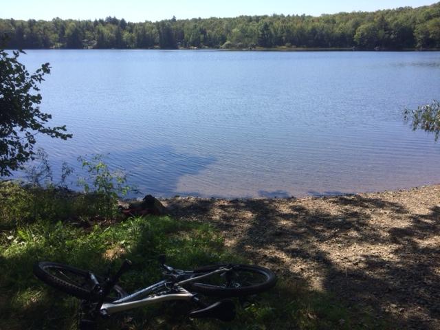 Levensellar Pond
