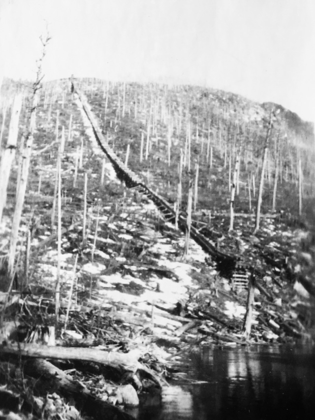 Logging in present Baxter lands previous to State Park